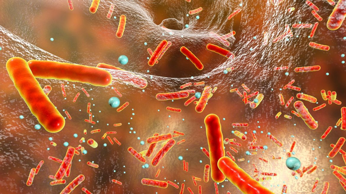 Nanotechnology Role In Efficacy And Utilization Of Nanomaterial In Combination With Antibiotic Resistant Bacteria.